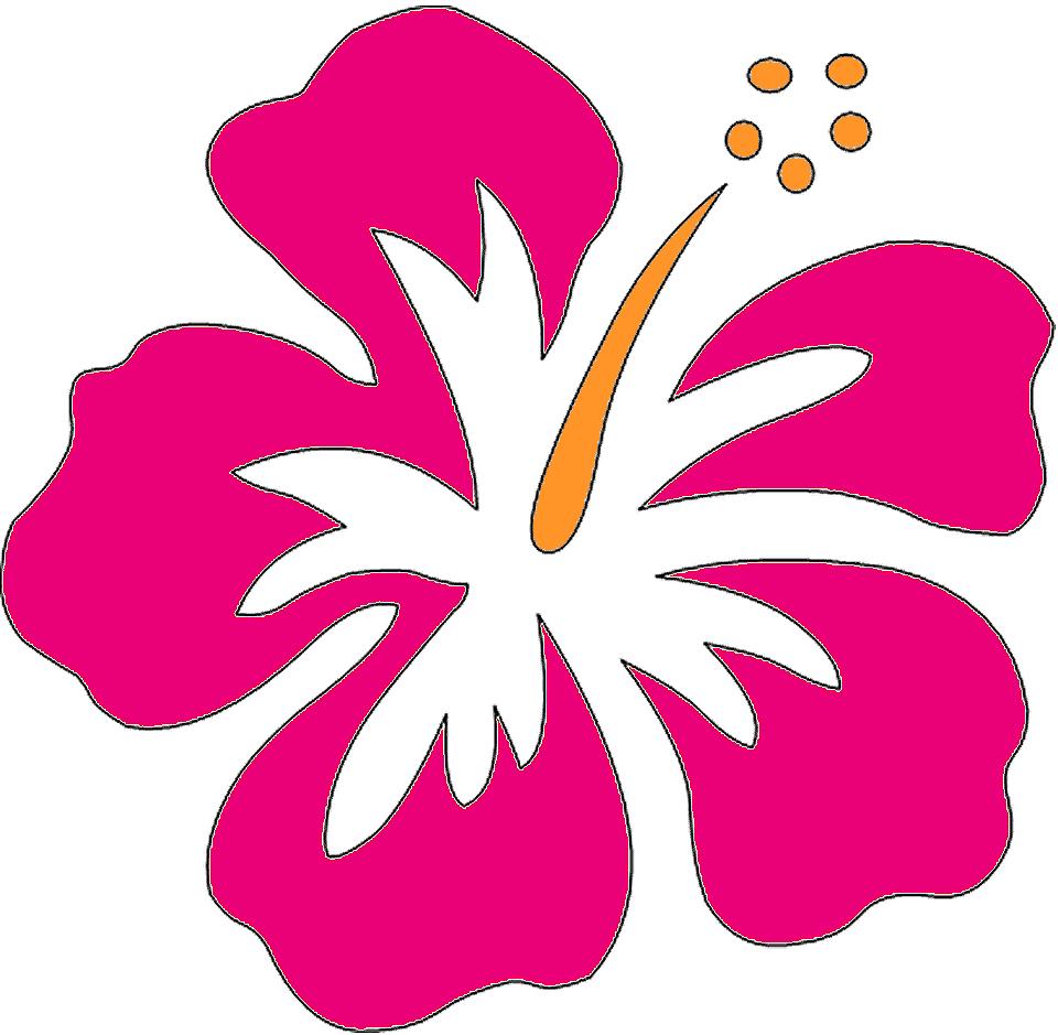 Hawaiian Flower Template Hibiscus Flower Clip Art At Clker Com