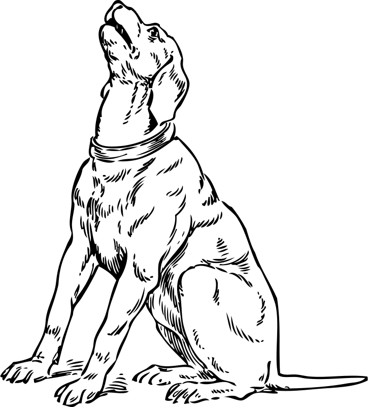 Dog Barking Clipart - Cliparts.co (725 x 800 Pixel)