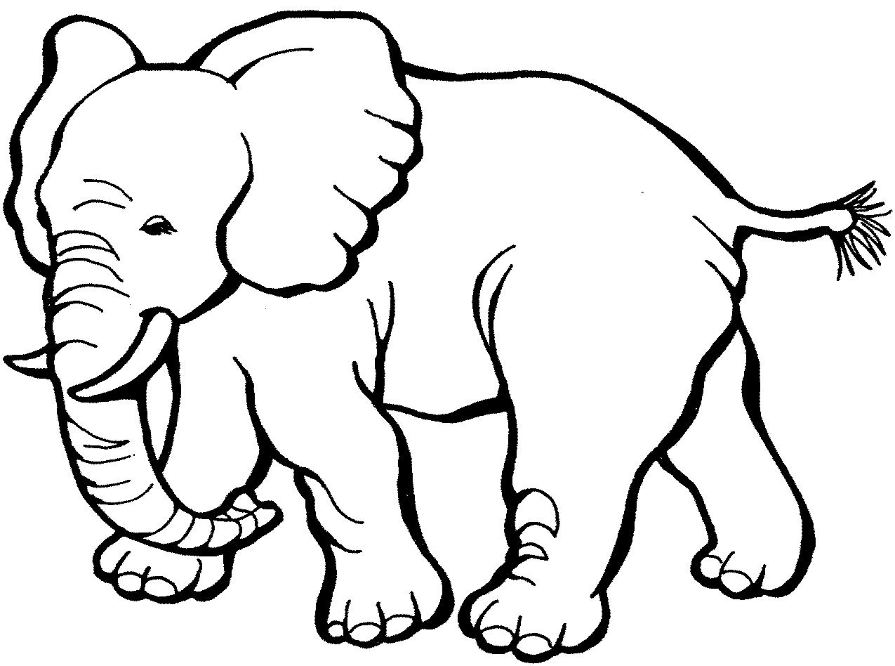 Elephant Face Clip Art