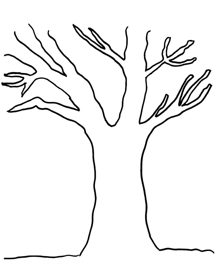 apple tree without leaves coloring pages tree coloring pages