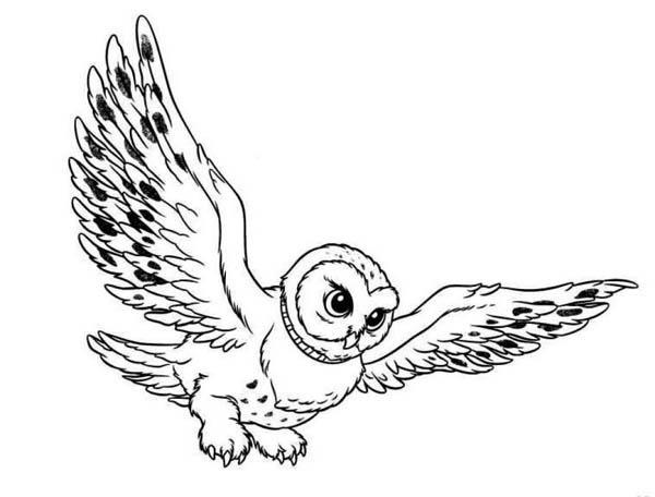 cartoon snowy owl cliparts co