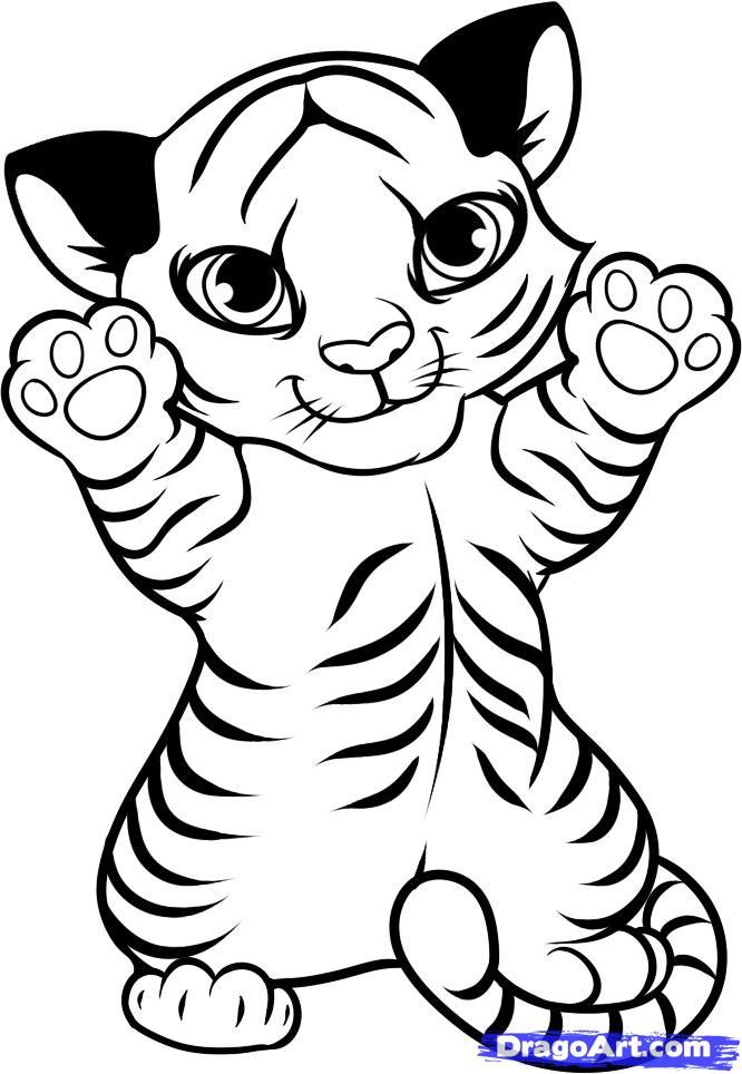 draw a tiger cub tiger cub step by step drawing sheets added