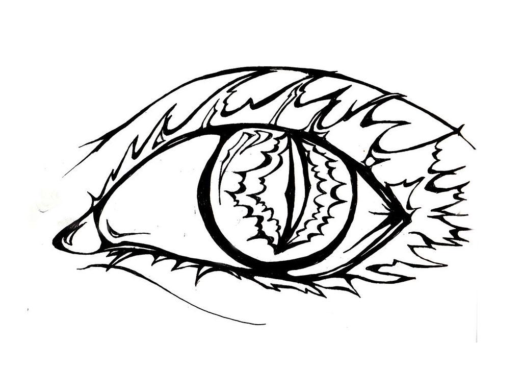 Tiger Eye Drawing