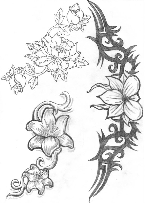coloring pages of flowers rose flower for tattoo