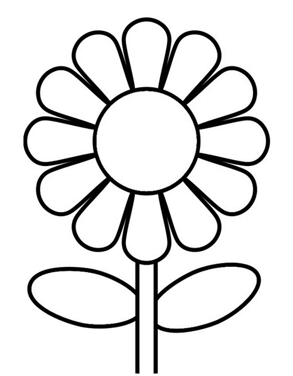 beautiful sunflower coloring page flower coloring pages kids