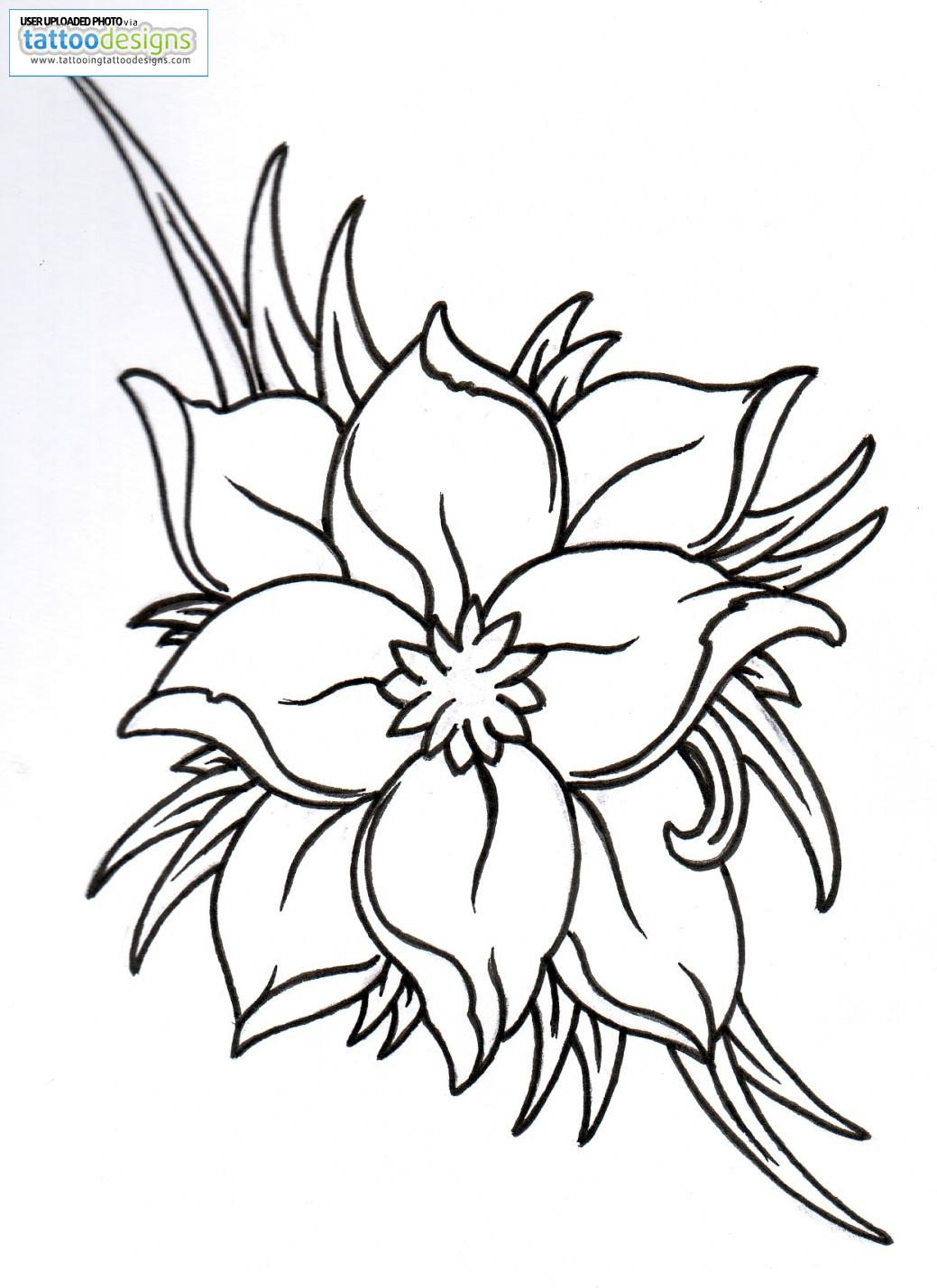 Hawaiian Flower Outline