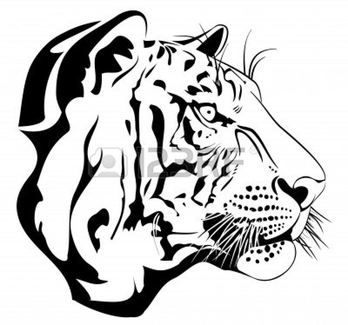 Bengal Tiger Clipart