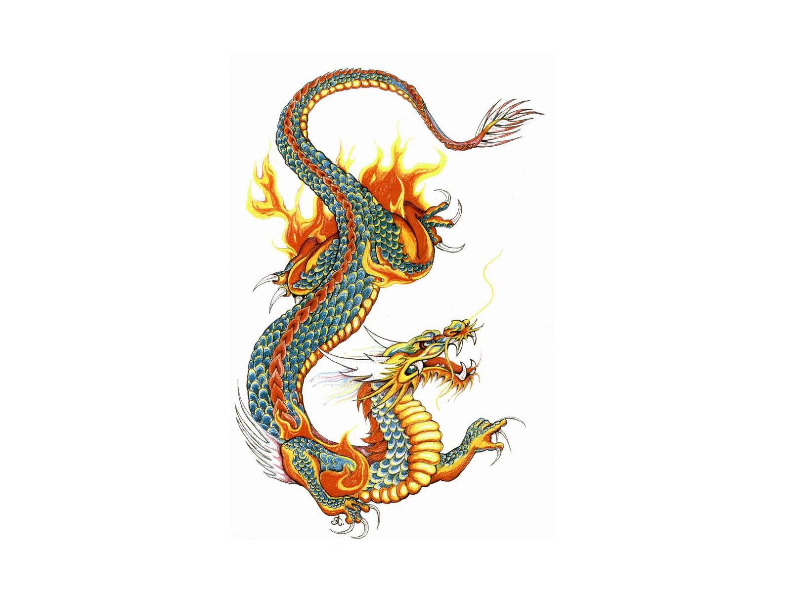 Coloriage Fee Des Alphas.Baby Dragon Color Page Coloriage Dragon 2 Alpha Coloriages