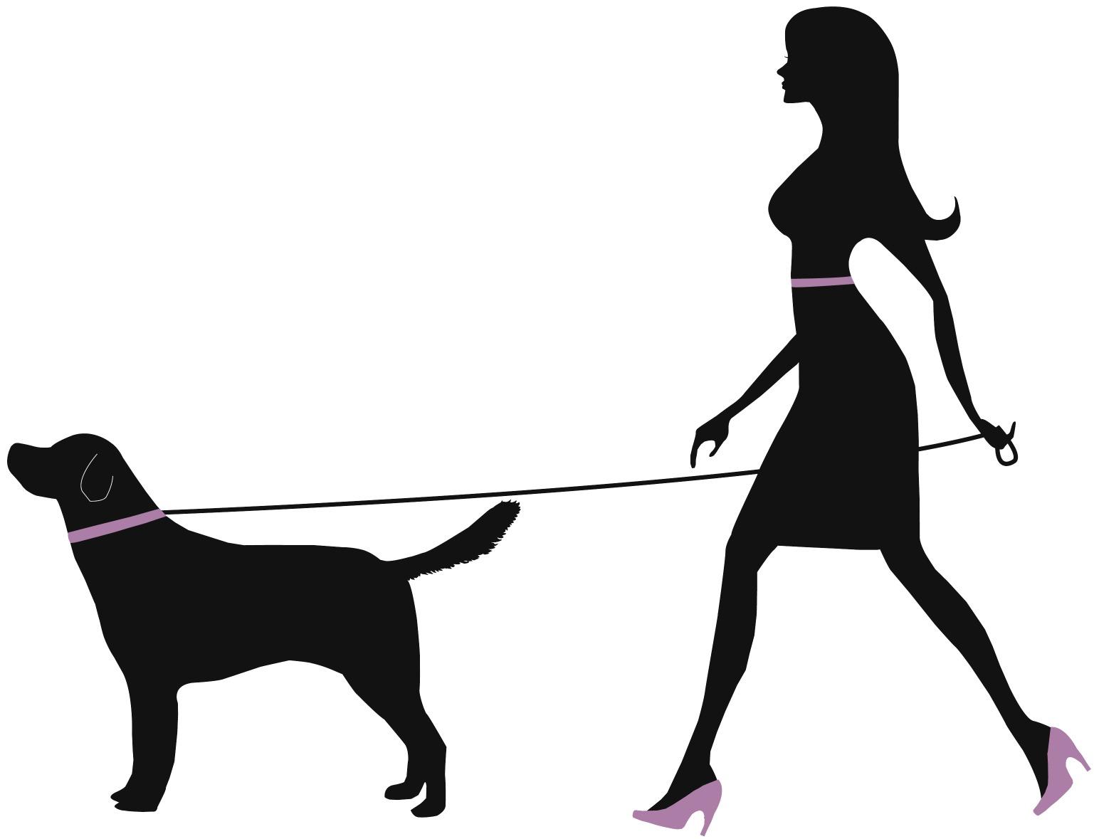 Dog Walking Image