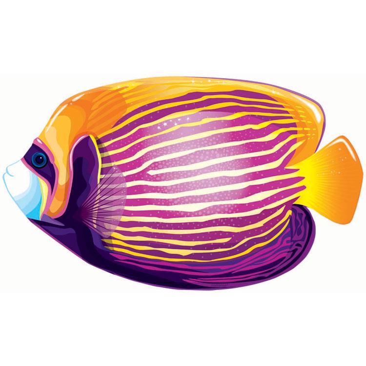 Betta Fish Clip Art - Cliparts.co (750 x 750 Pixel)