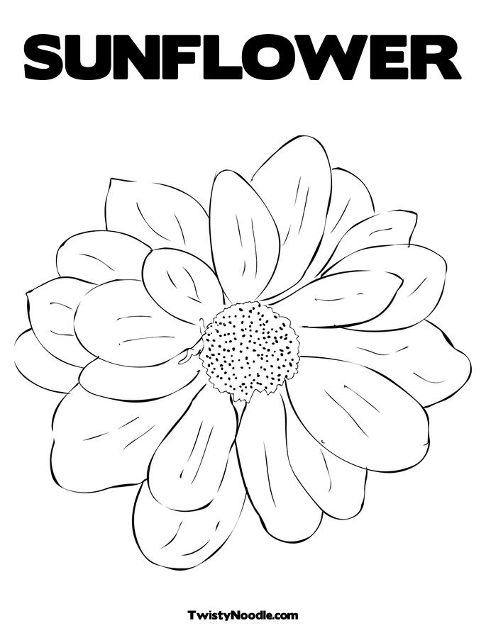 coloring page sunflower online coloring