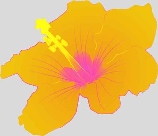 3D Flower Clipart