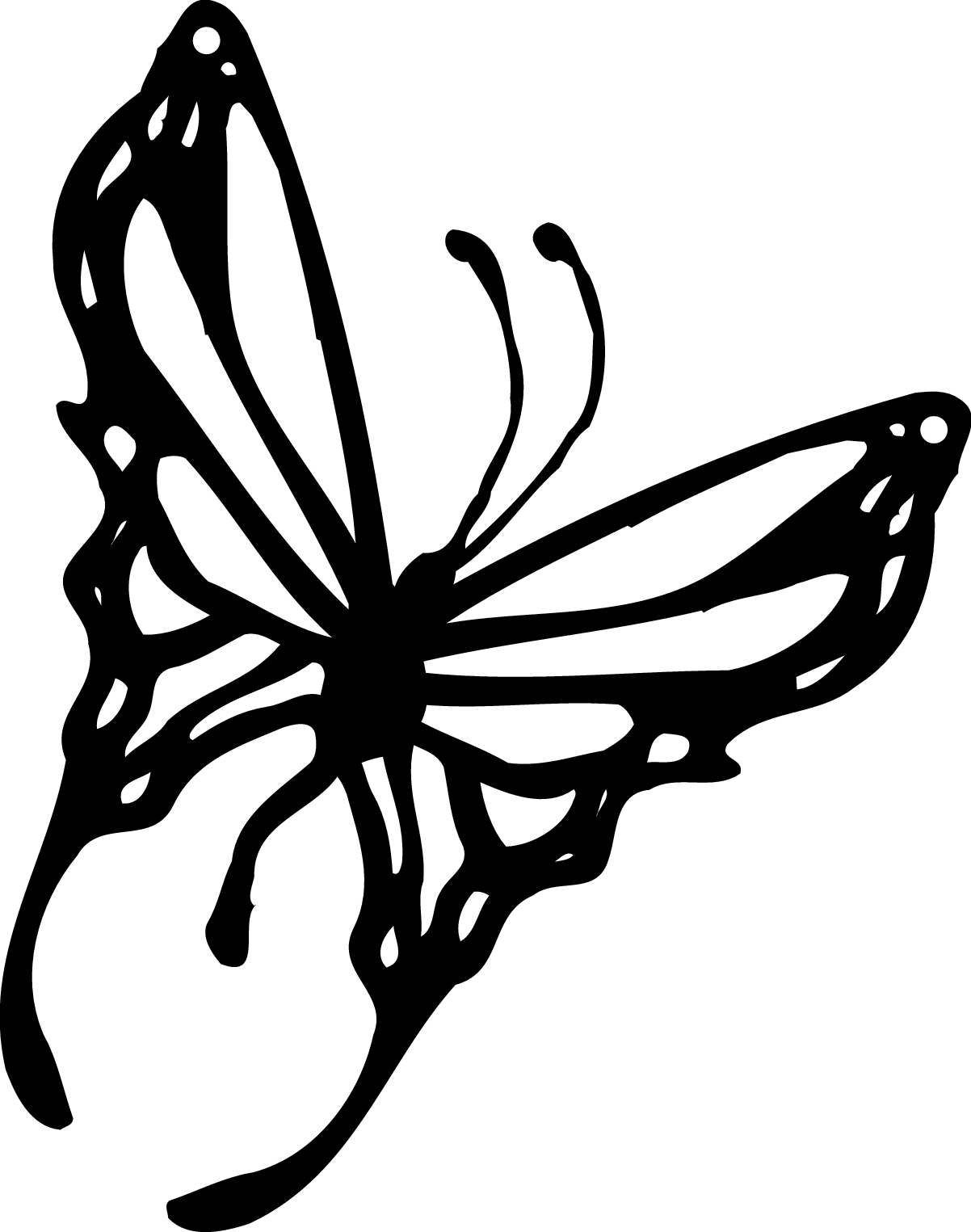 Monarch Butterfly Gallery For Butterfly Graphics Clip Art Black White Image