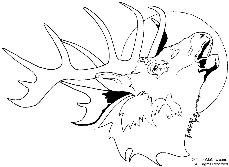 Elk Deer Skull Clip Art Clipartion Com Image