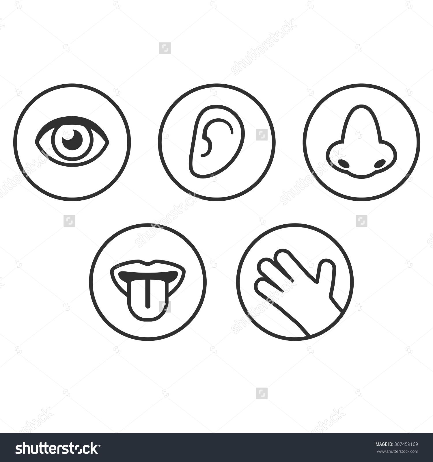5 Senses Clipart Icon Pictures On Cliparts Pub