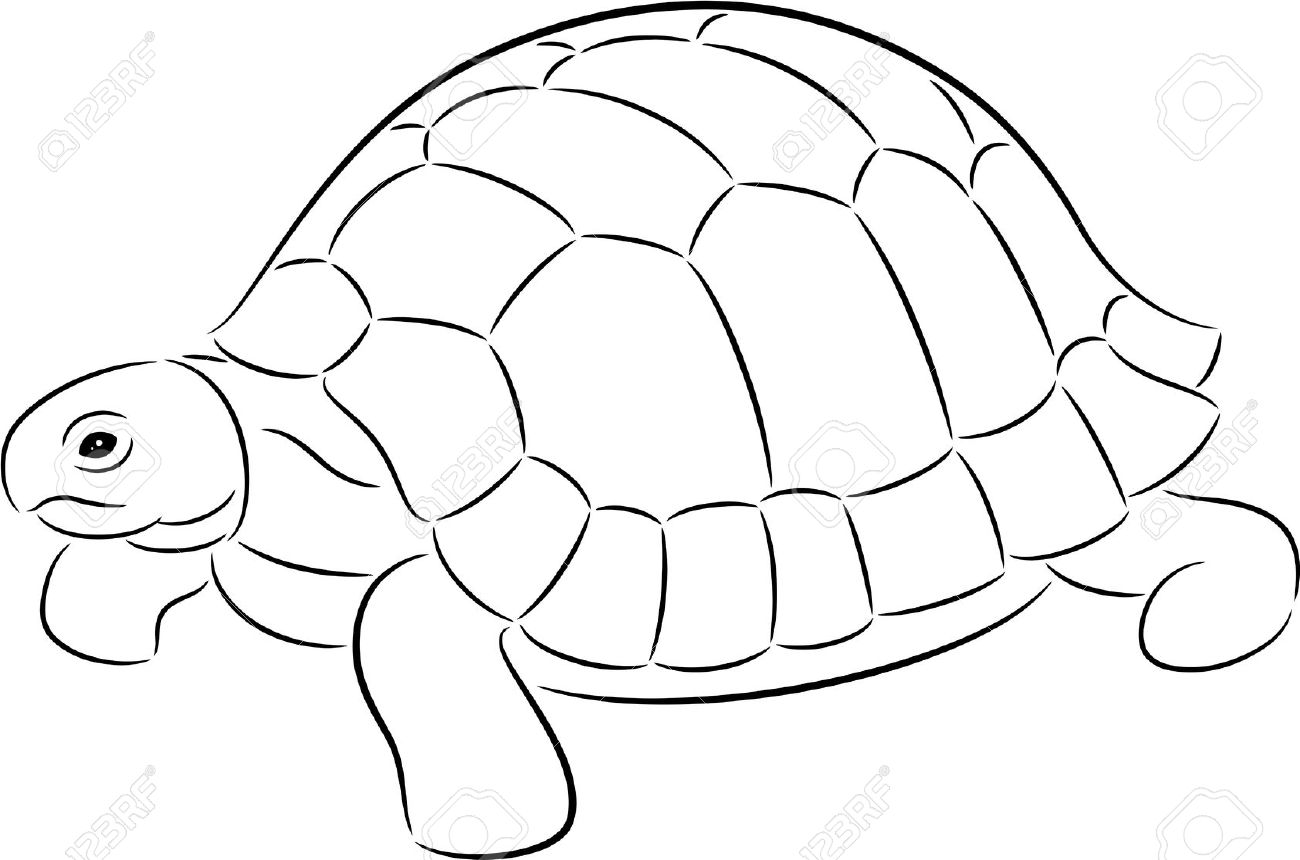 Tortoise Clipart Black And White 4 Clipart Station