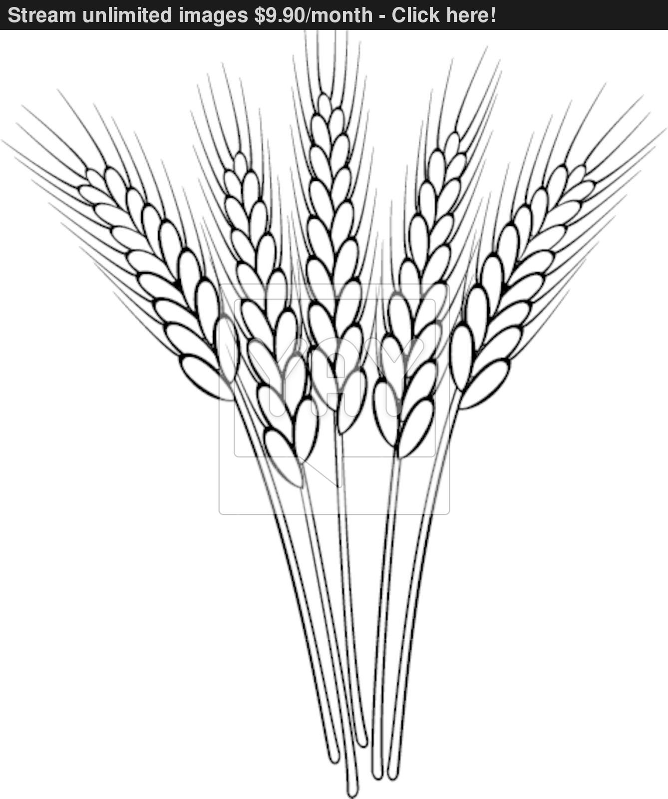 Wheat Clipart Black And White 5 Clipart Station