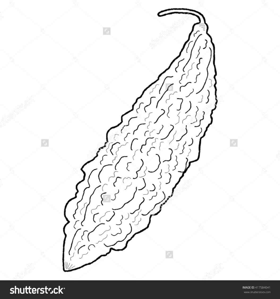 Bitter Foods Clipart Black And White Clipart Ampalaya