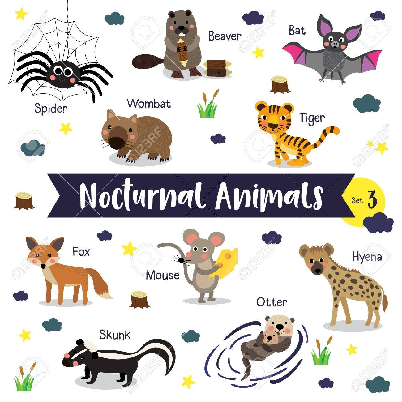 Nocturnal Animals Clipart 1 Clipart Station