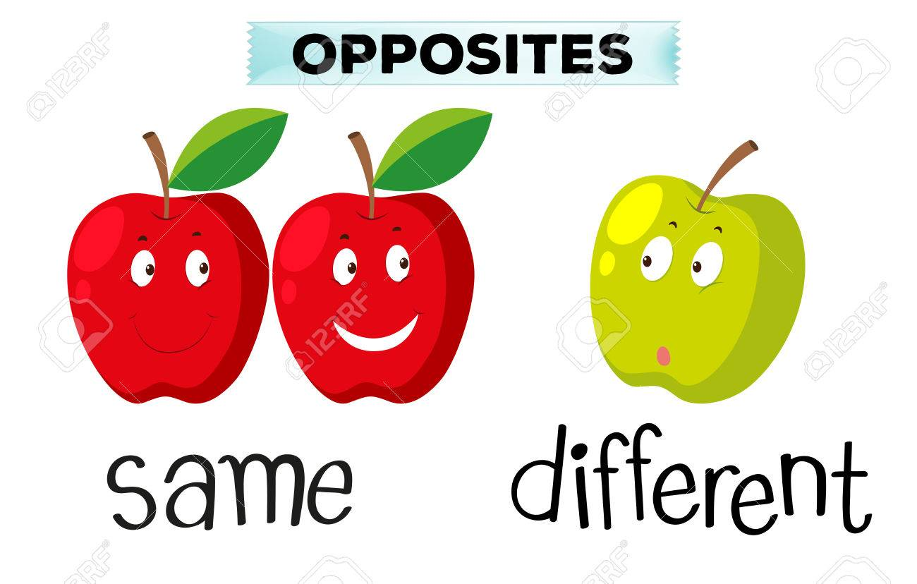 Opposite Words For Same And Different Clipart Station