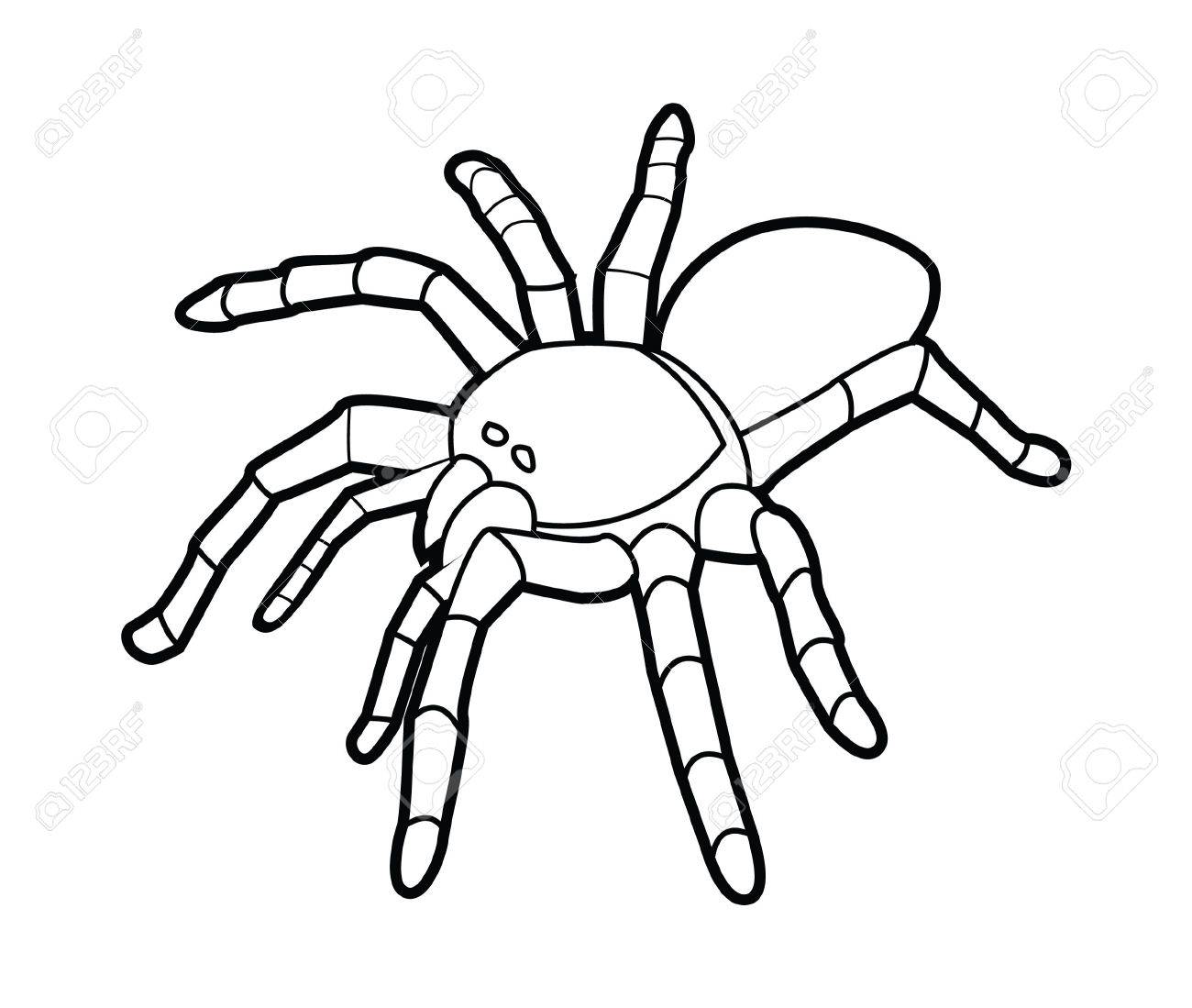 Spider Black And White Clipart 4 Clipart Station