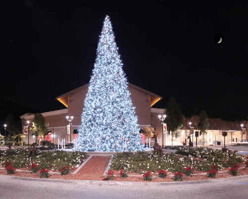 Commercial Christmas Lights Tree
