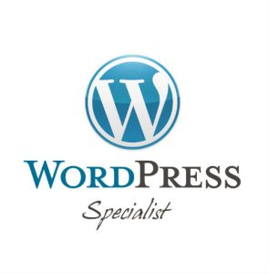 Wordpress-Developer-Cardiff-295x300