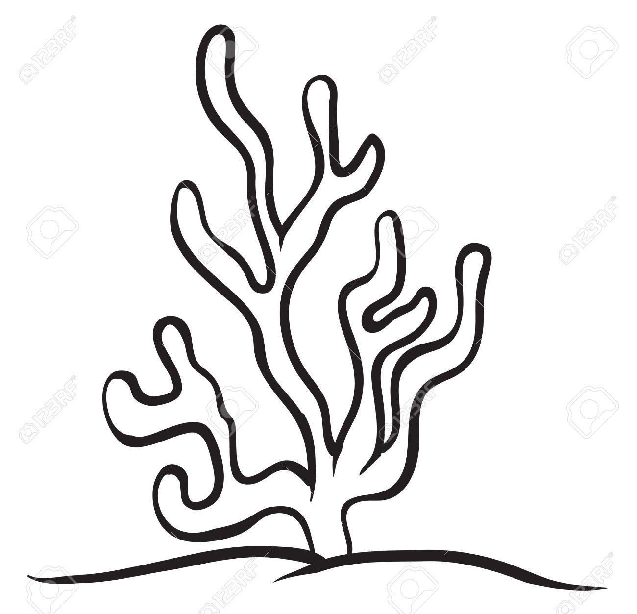 Aquatic Plants Clipart