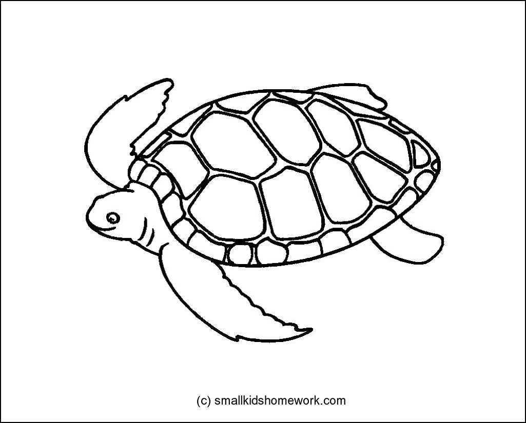 Beach Clipart Outline