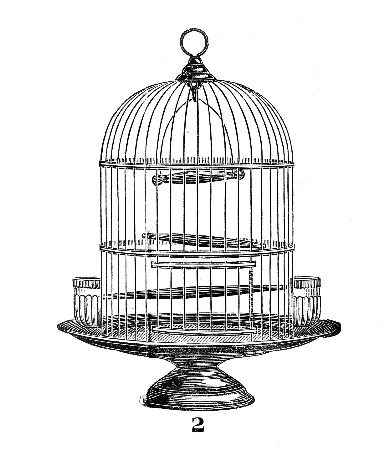 Bird Cage Clipart 20 Free Cliparts