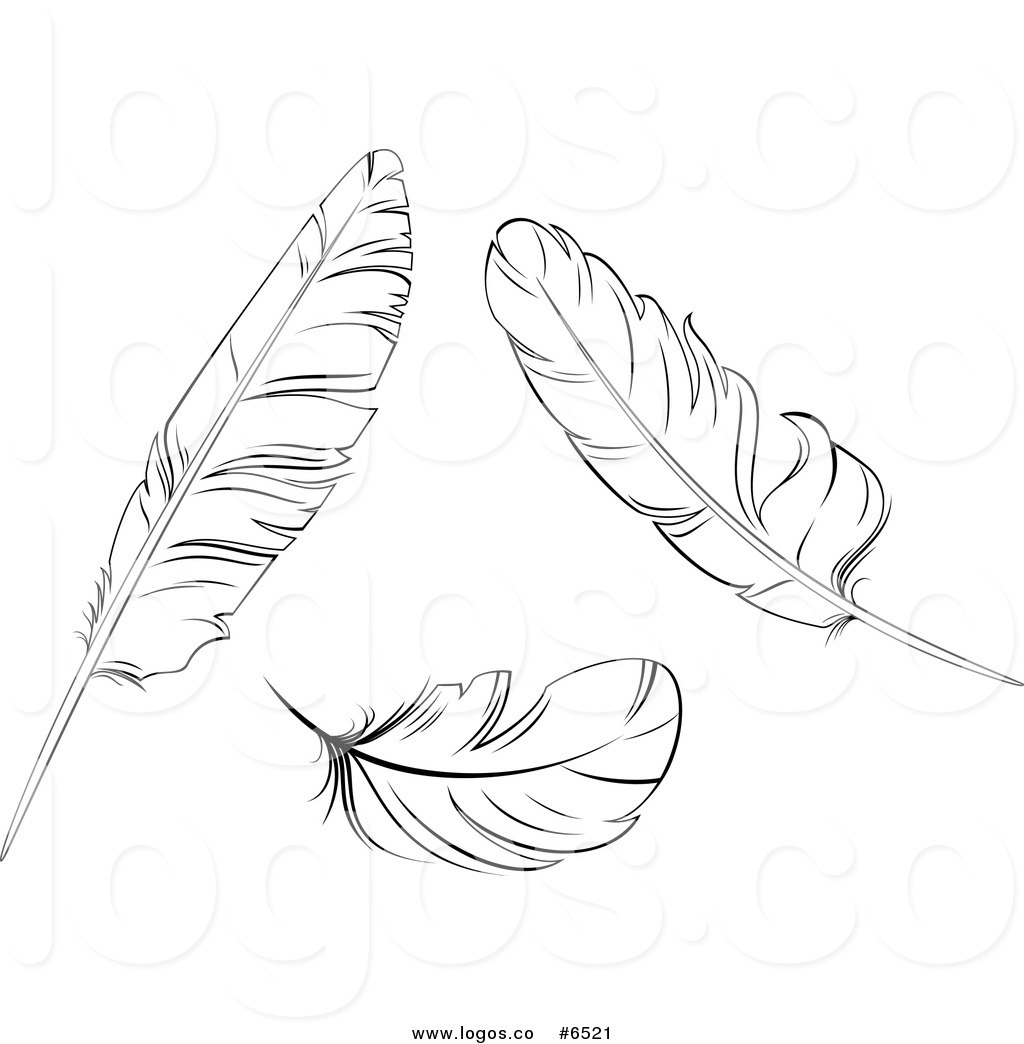 Bird Feathers Clipart 20 Free Cliparts