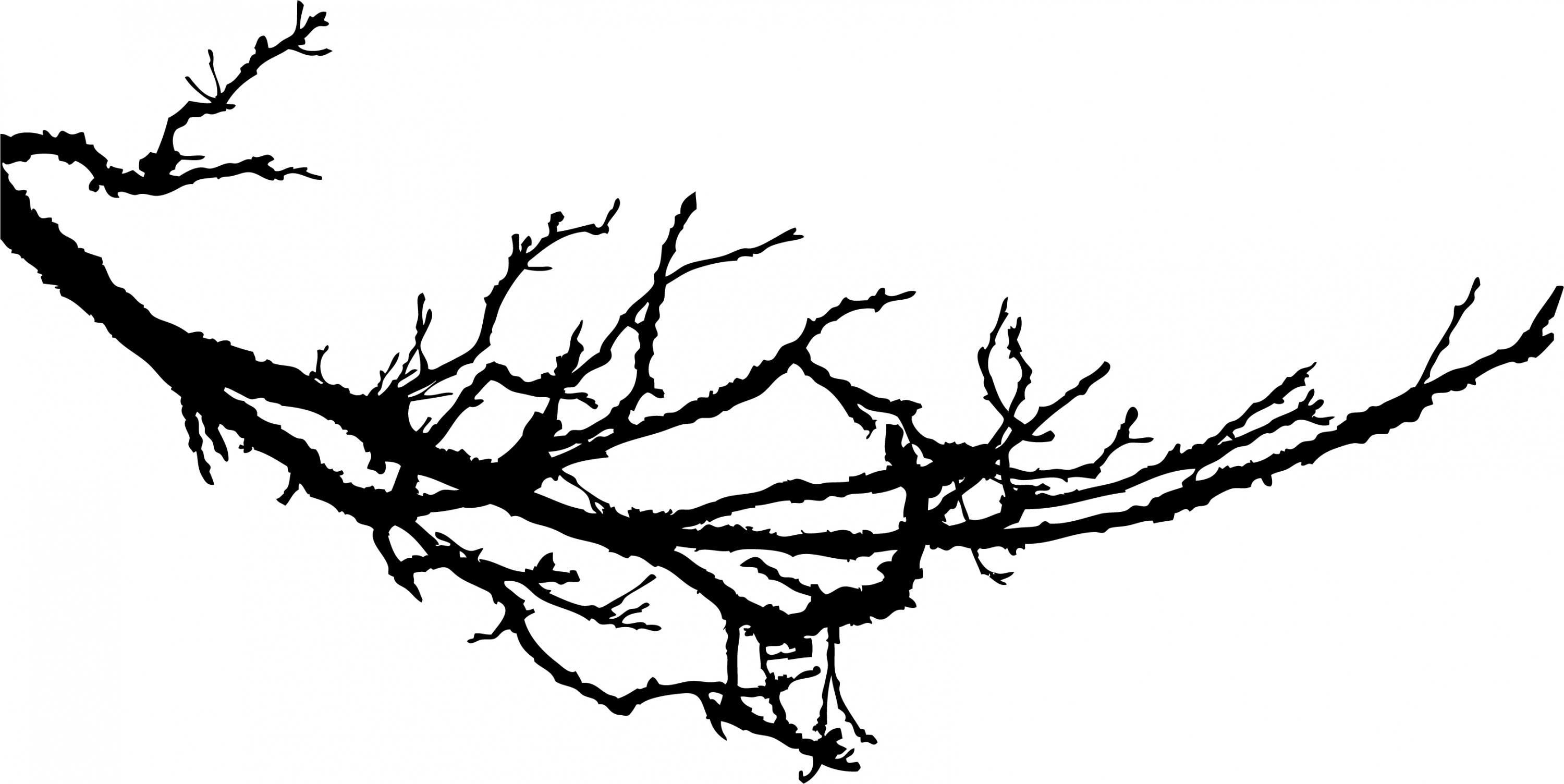 Free Tree Clipart Black And White Broken Tree