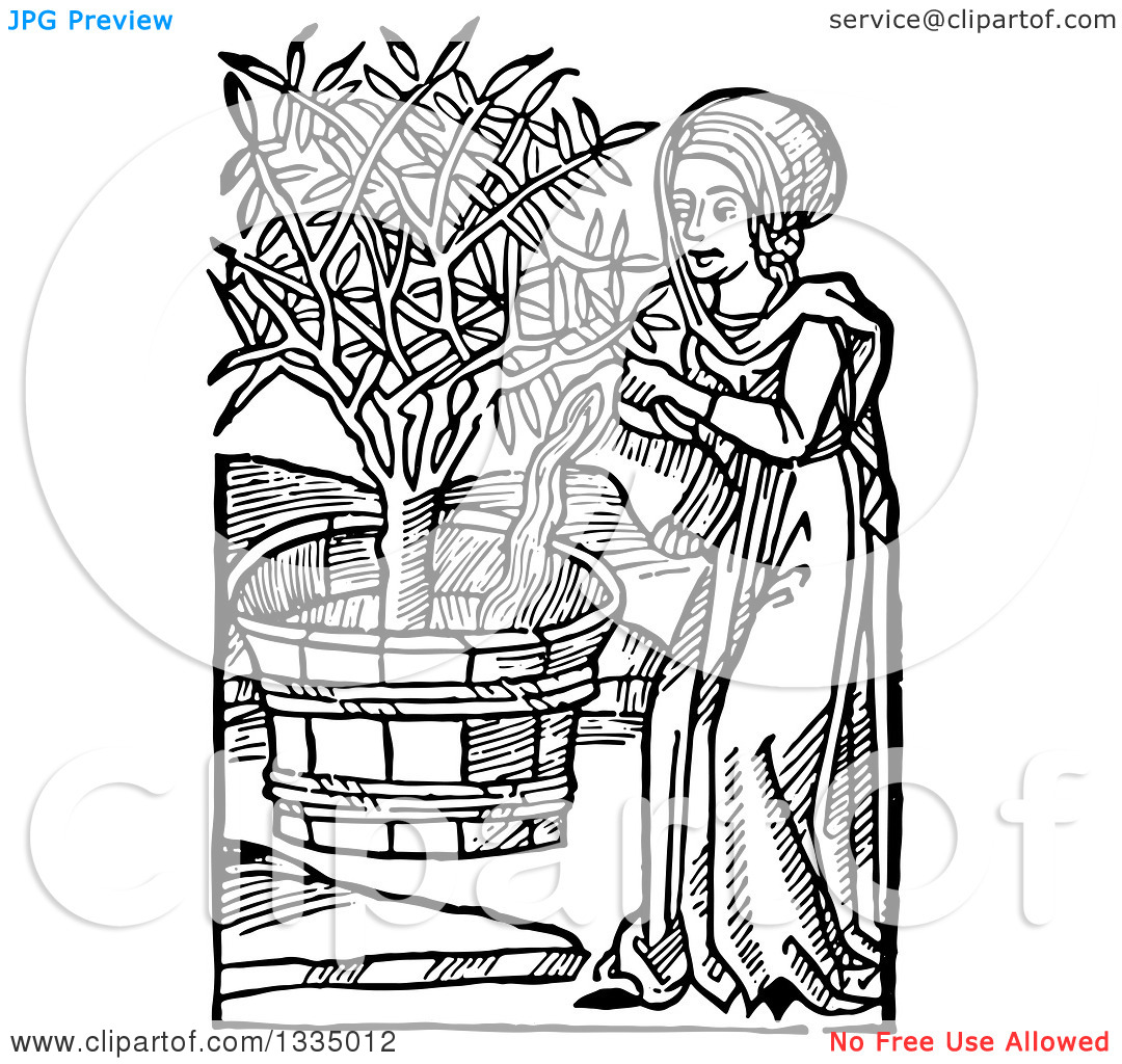 Planting Flag Clipart Middle Ages