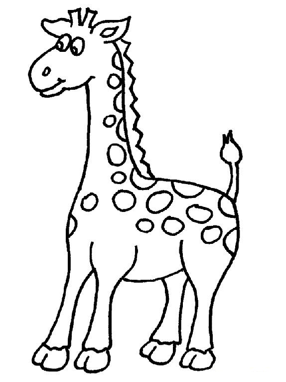 Giraffe Clipart Black And White Outline Png Clipground