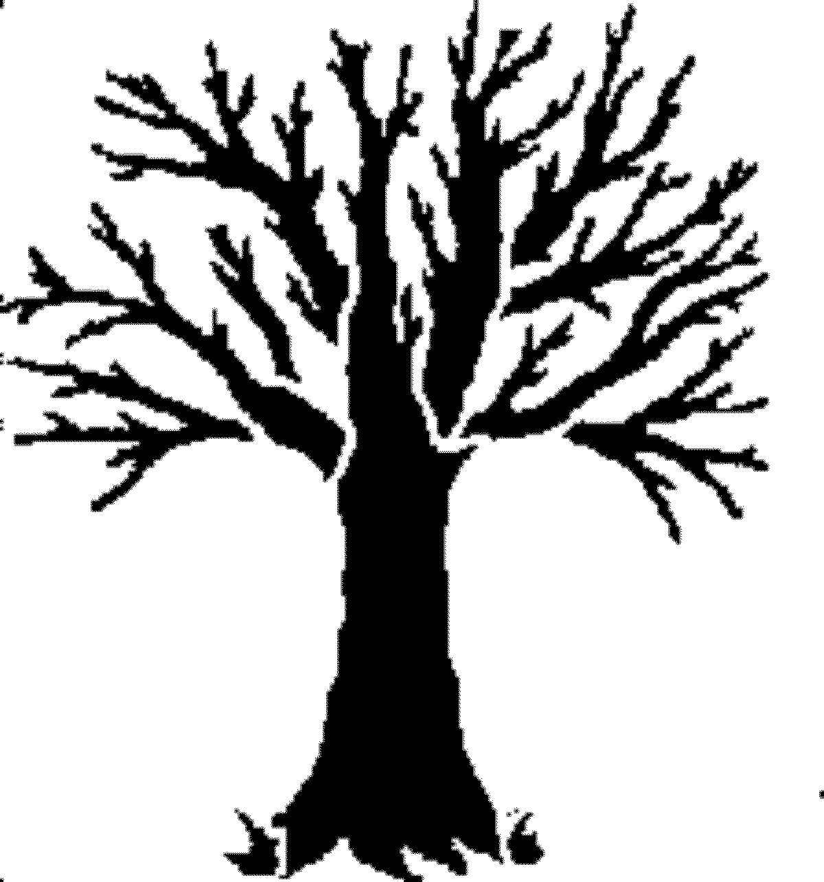 Dead Tree Outline Clipart
