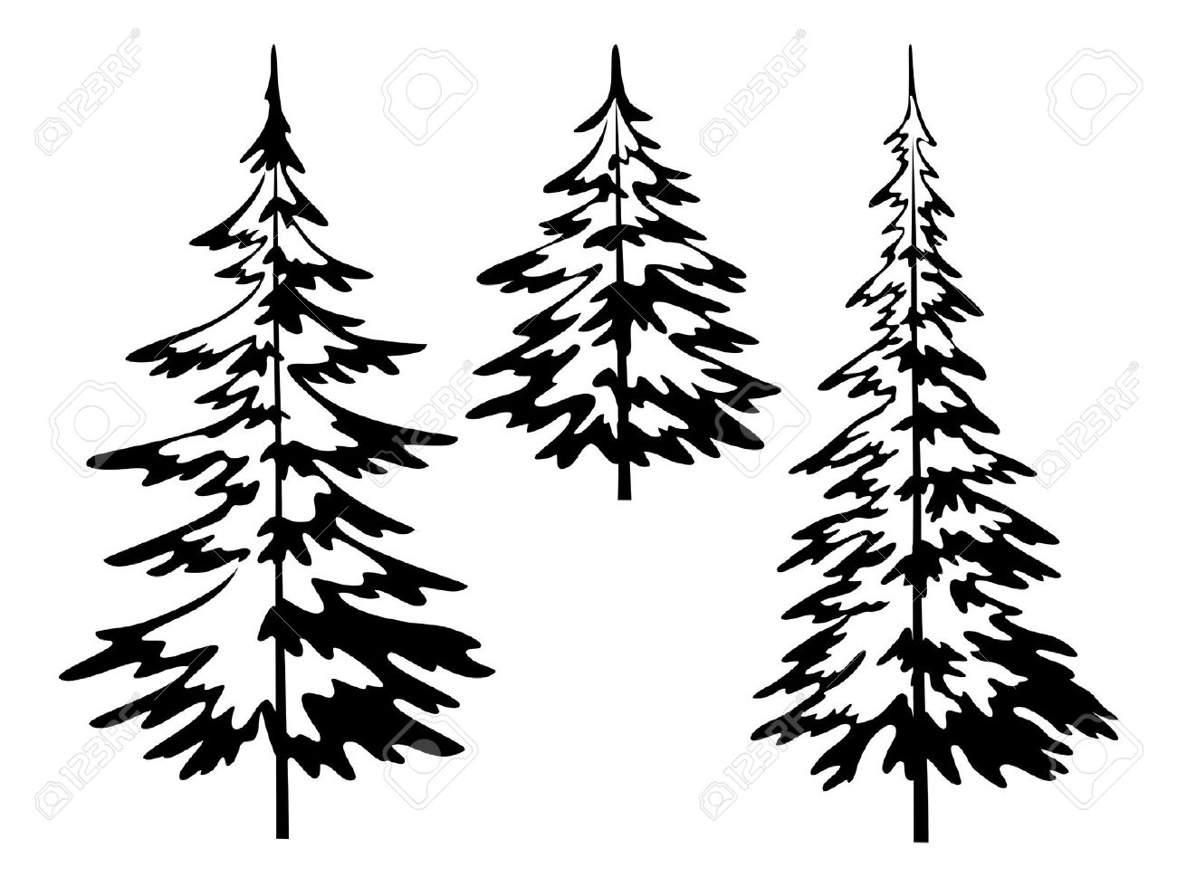 Evergreen Bush Clipart