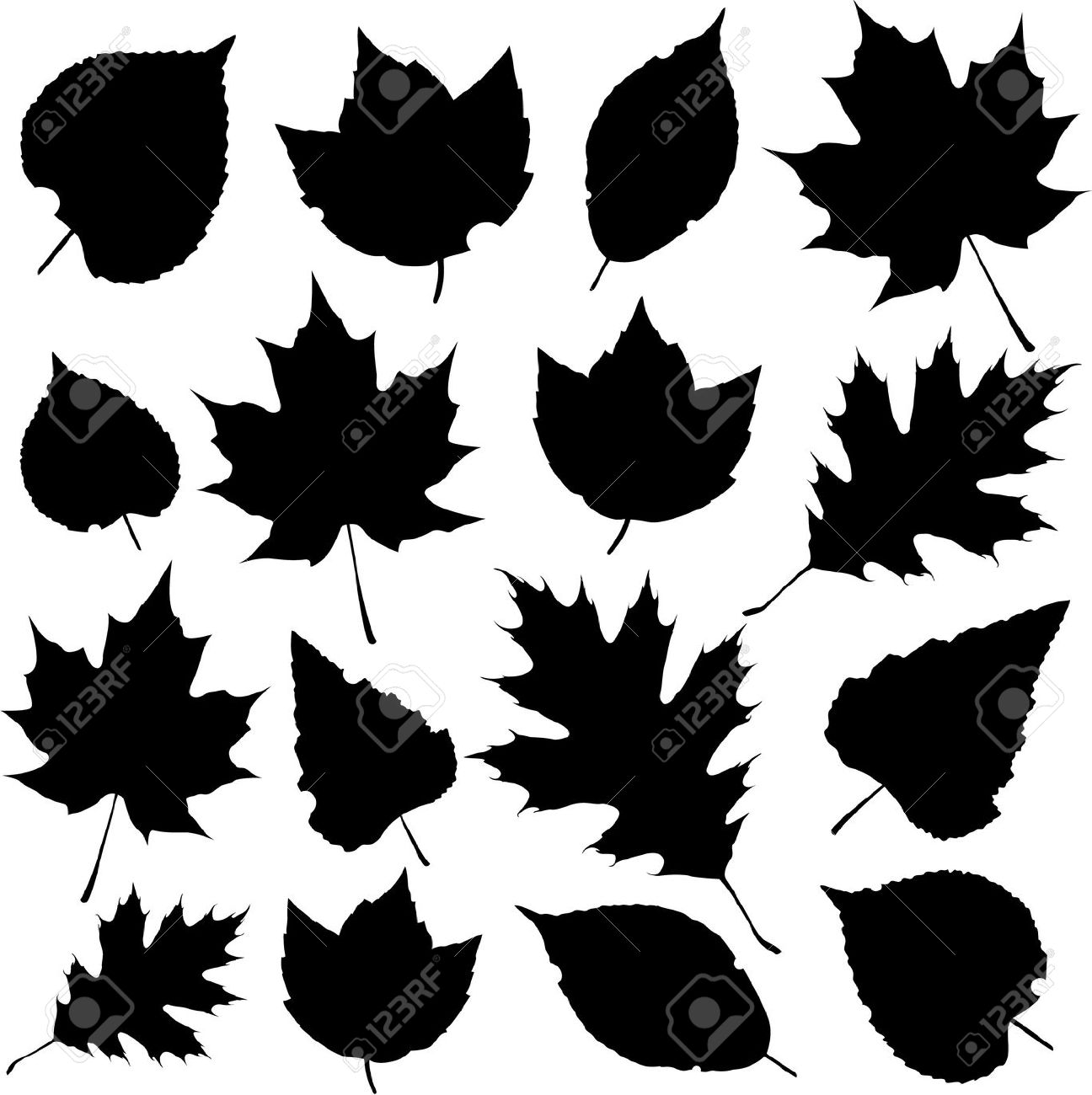 Tropical White Black Clip Leaves Art And