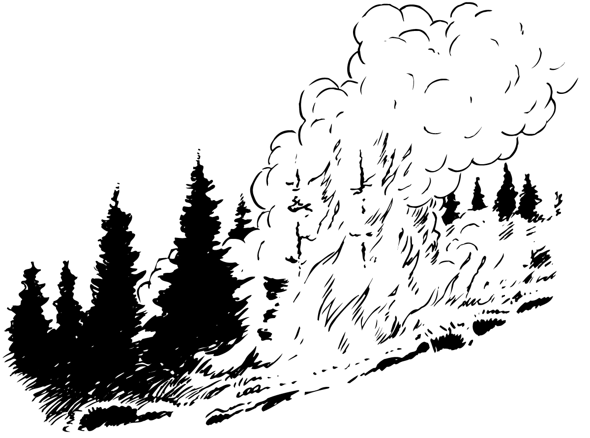 Forest Fire Clipart 20 Free Cliparts