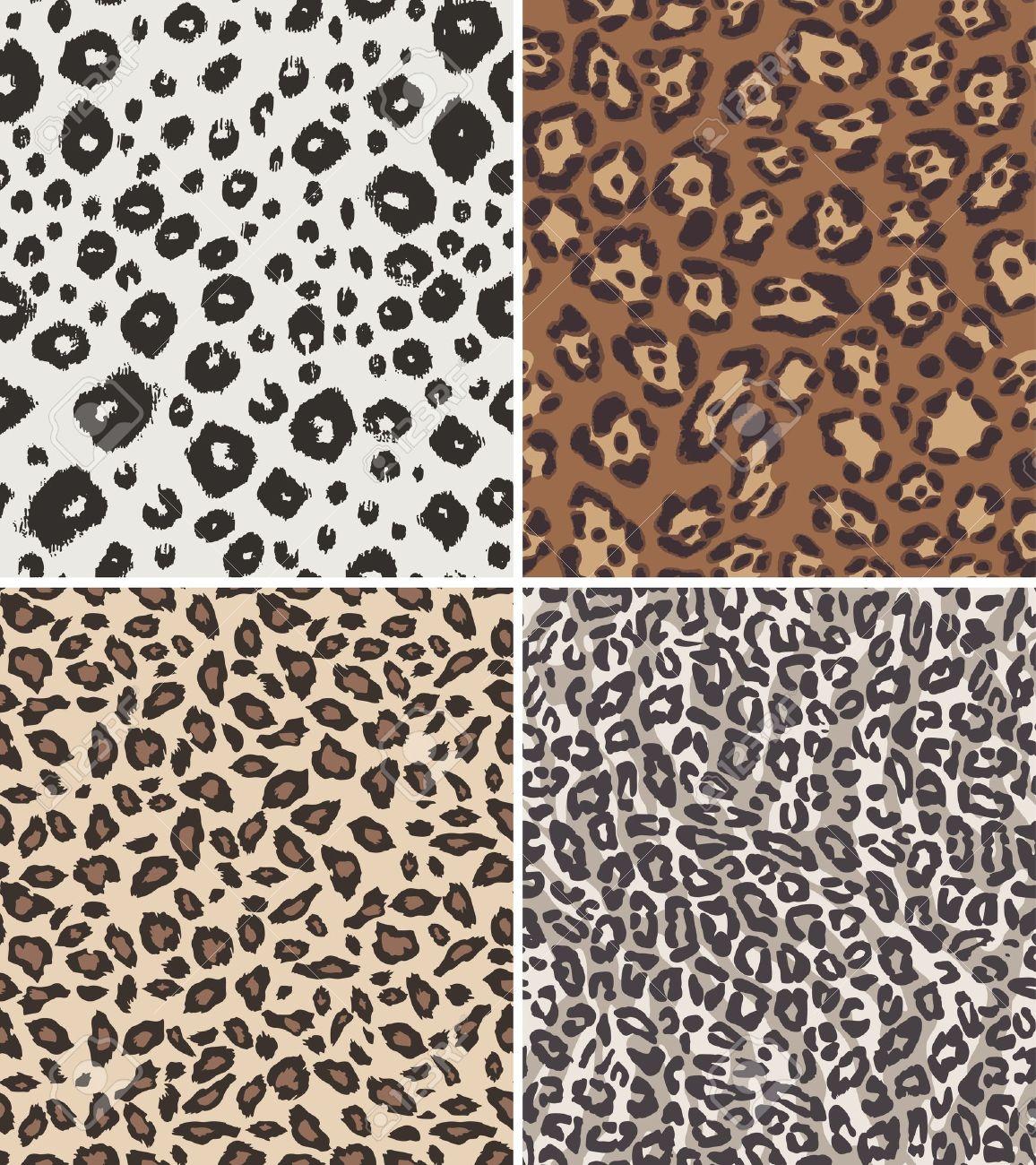 Snow Leopard Wild
