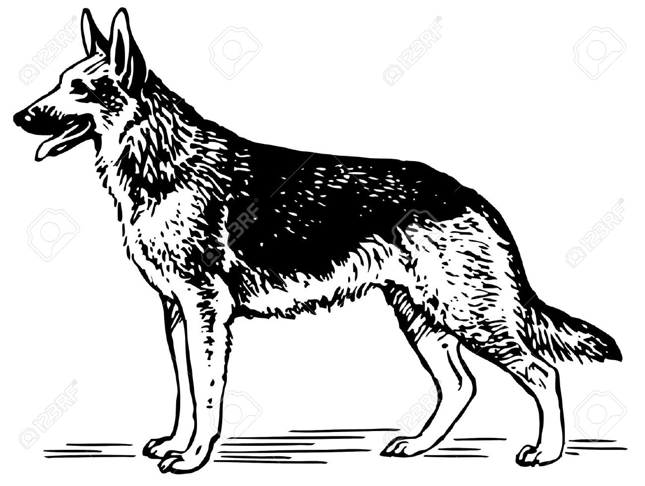 German Shepherd Dog Clipart