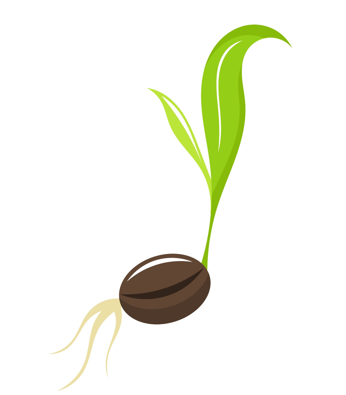 Seed Clipart 20 Free Cliparts