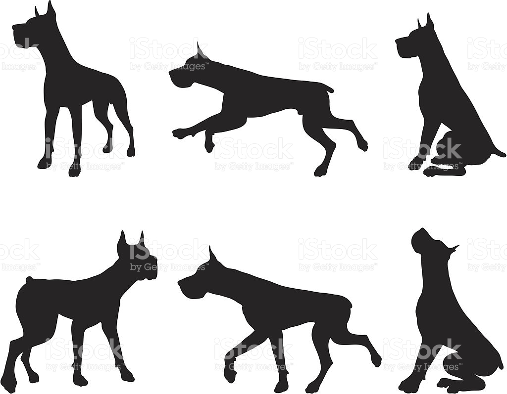 Great Dane Clipart