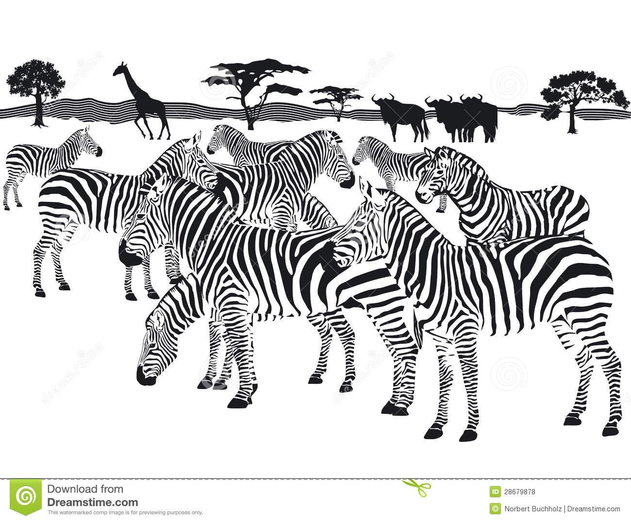 Herd Clipart