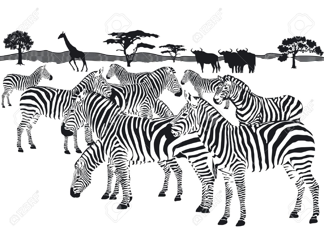 Herd Of Zebras Clipart 20 Free Cliparts