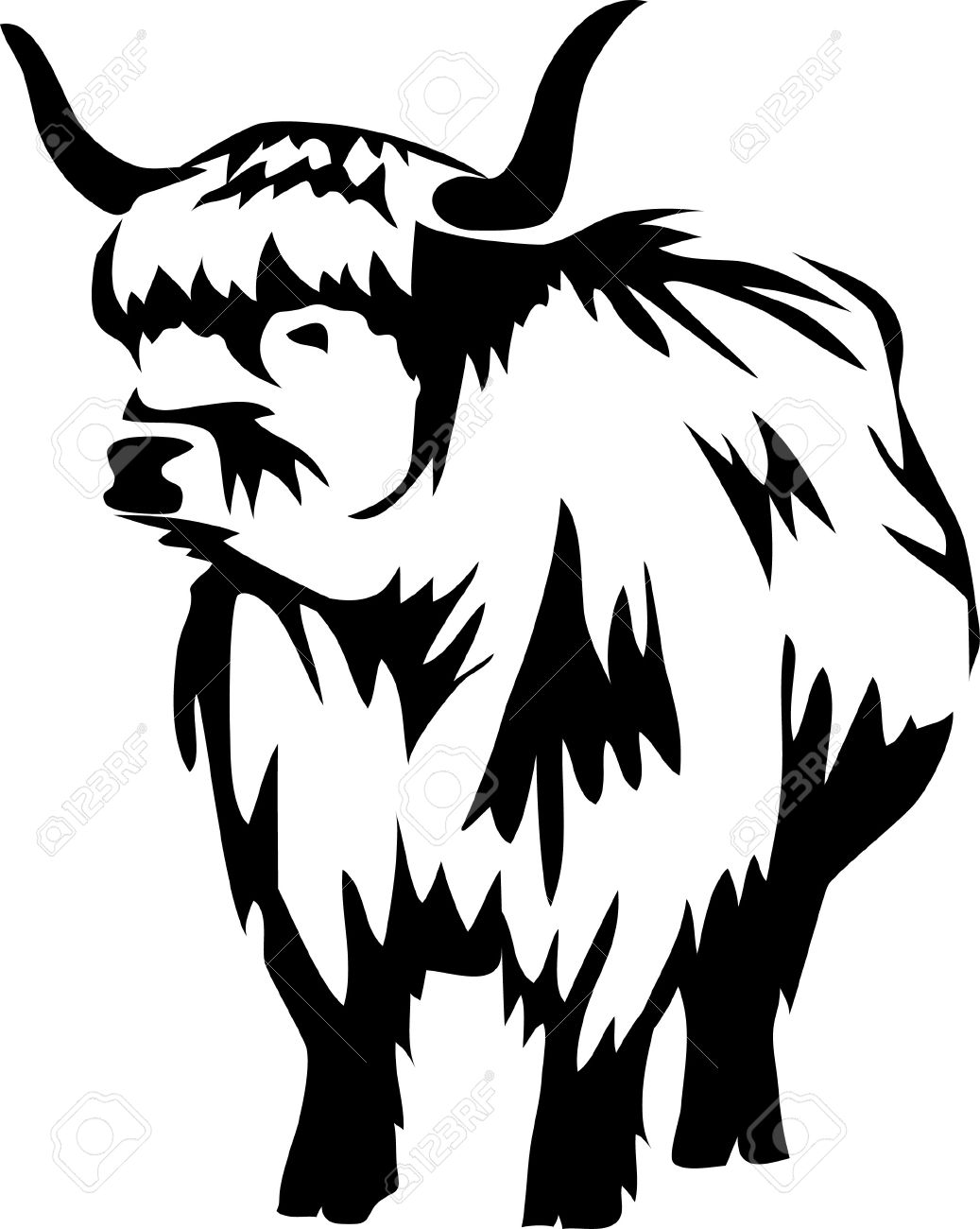Scottish Highland Cows Clipart