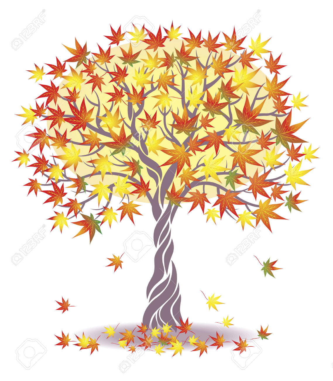 Maple Tree Clipart Clipground