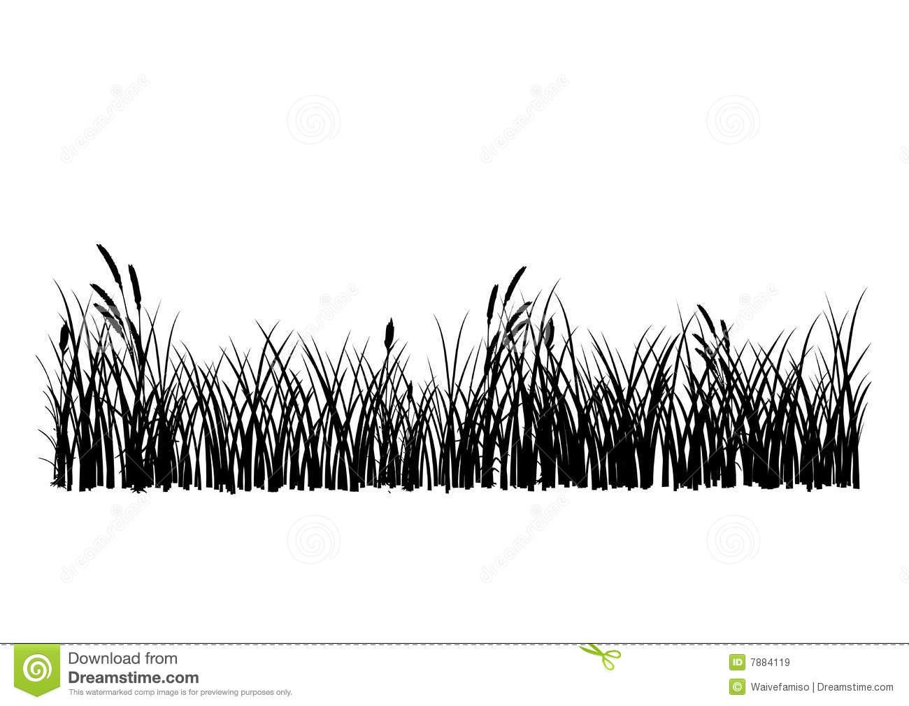 Ornamental Grass Clipart 20 Free Cliparts