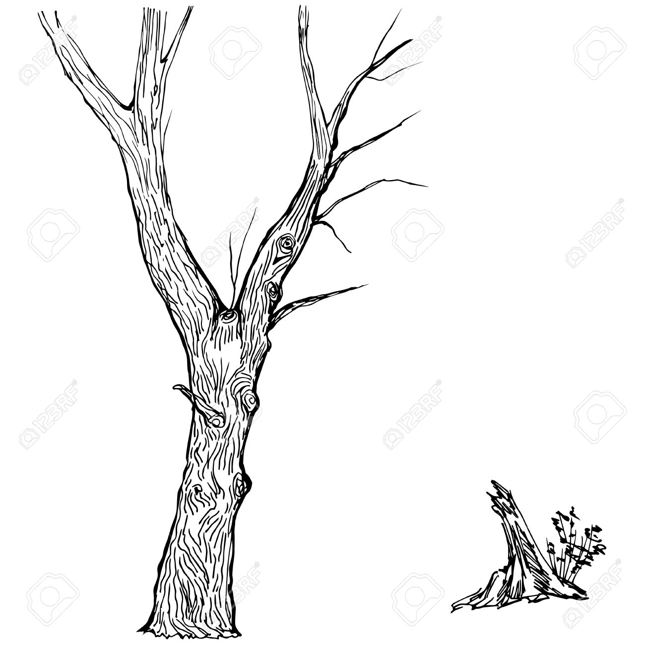 Tree Trunk Clipart Sillouette