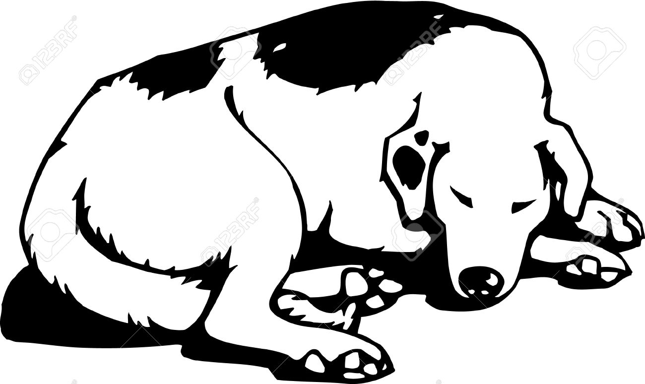 Sleeping Animal Clipart Black And White