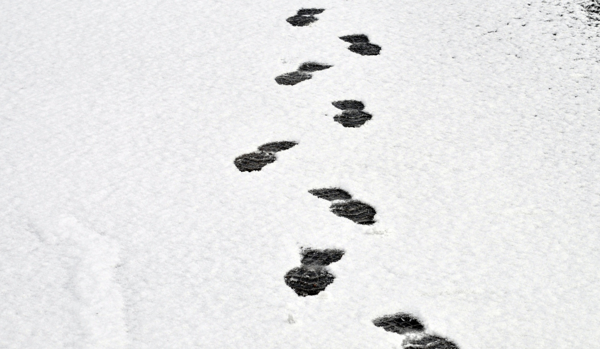 Snow Tracks Clipart